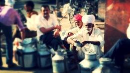Milk Market India